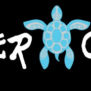 NQ-Sticker-Turtle